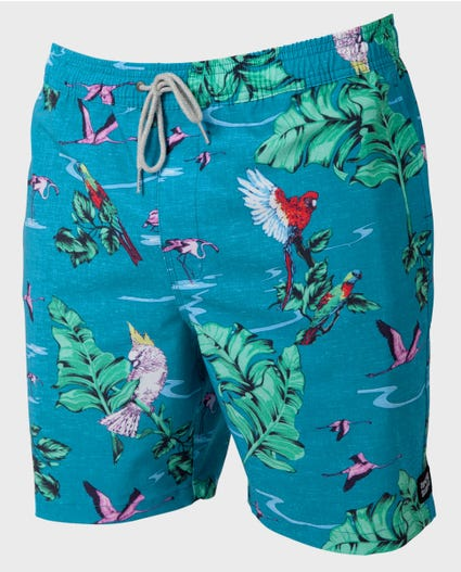 Cascade 18 Volley Boardshorts in Teal