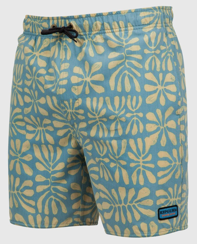 Motion 17 Volley Boardshorts in Blue