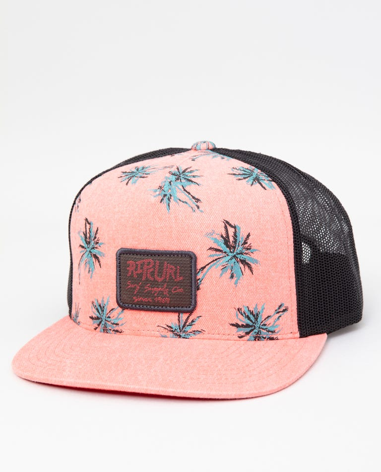 Party Palm Trucker in Coral