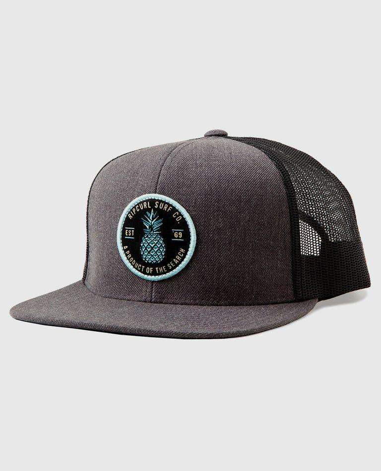 Dole Trucker Hat in Charcoal