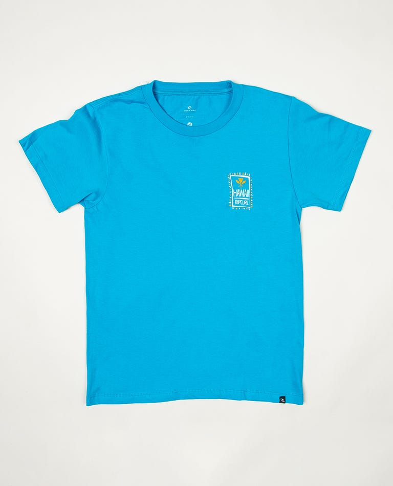 Boys Hawaiian Paddles Premium Tee in Turquoise