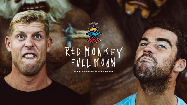 The Search, Red Monkey, Full Moon is Back!